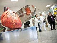 Институт клинической и экспериментальной медицины (Фото: Филип Яндоурек, Чешское радио)