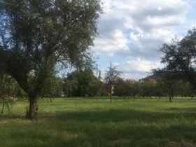 Сад Бржевновского монастыря в Праге, фото: Ева Свободова
