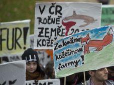 Photo: ČTK