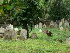 Jewish cemetery in Kolin, photo: Pajast, CC BY-SA 3.0 Unported