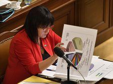 Finance Minister Alena Schillerová, photo: ČTK/Michal Kamaryt