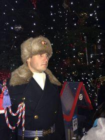 Почетный караул, Фото: Катерина Айзпурвит