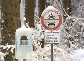 Stadtwald von Cheb in Bayern (Foto: ČT 24)