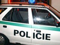 Policejní auto před nočním klubem v Dubí na Teplicku v průběhu speciální akce, která byla v noci na 11. října zaměřena na obchod se ženami, foto: ČTK