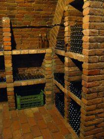 Vinný sklep, foto: Barbora Kmentová