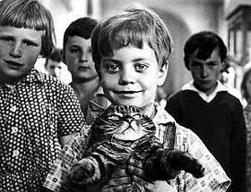 Michael Wellner-Pospisil dans le film 'Un jour un chat'