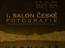 Salon české fotografie