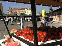 Photo: www.prazskatrznice.cz
