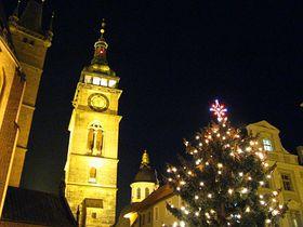 Árbol de Navidad en Hradec Králové: del jardín a la plaza