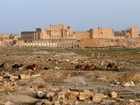 Palmyra, photo: Adamkou, CC BY 3.0