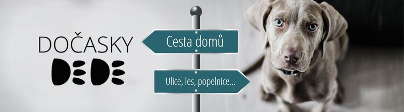Фото: Docasky DeDe