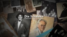 """Collage aus dem Film """"Die Schaleks - Zwischen den Fronten"""" (Quelle: © Die Kulturingenieure)"""