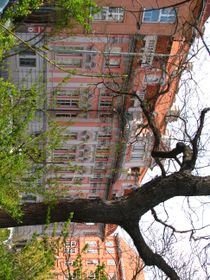 Дом Фауста, Фото: архив «Радио Прага»