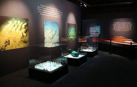 Foto: presentación oficial de la exposición 'Titanic'