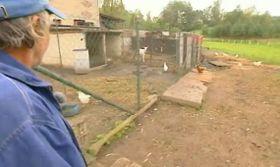 Strahovice farm, photo: Czech Television