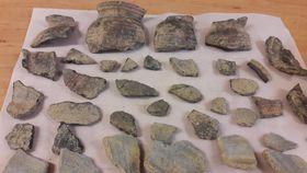 Los fragmentos de cerámica hallados,  foto: Dominika Bernáthová