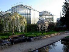Jardín Botánico de Liberec, foto: Archivo del Jardín Botánico de Liberec