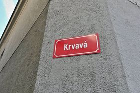 Кровавая улица, Фото: Лукаш Милота, ЧРо
