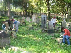 International volunteers work to tend the graves