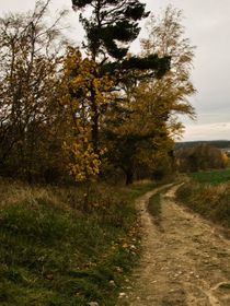 Some Czech country and field roads have been in use for centuries, photo: Vít Pohanka / Czech Radio