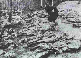 El genocidio de Katyn