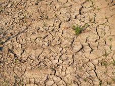 Dürre - sucho (Foto: Kerstin Riemer, Pixabay / CC0)
