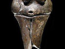 La Venus de Věstonice, foto: Petr Novák, Wikipedie
