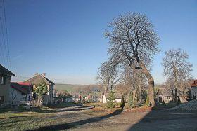 Číhošť, foto: Prazak, Wikimedia CC BY-SA 3.0