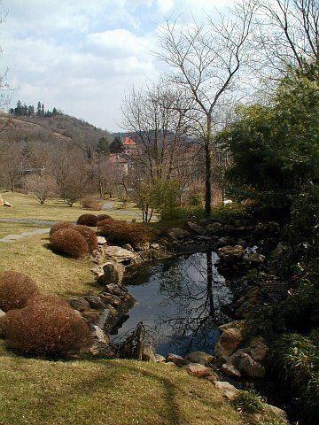 In Troja blühen die Krokusse: Botanischer Garten der Hauptstadt Prag ...