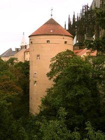 Torre Mihulka (Foto: Autor)