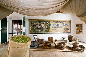 Hops Museum, photo: www.muzeum.chmelarstvi.cz