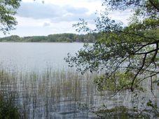 Máchovo jezero, foto: Katarína Brezovská