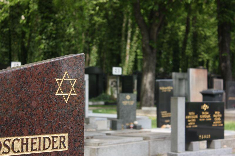 Новое еврейское кладбище в Праге, фото: Štěpánka Budková
