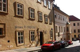 Pivnice U Hrocha, photo: Štěpánka Budková