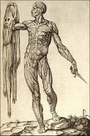 'Historia de la Composición del Cuerpo Humano'
