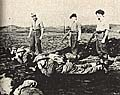 El entrenamiento de paracaidistas checoslovacos