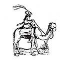 Jinete turco en camello