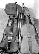 Srovnání houslí askřipek