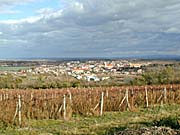 Valtice (Foto: Autorin)