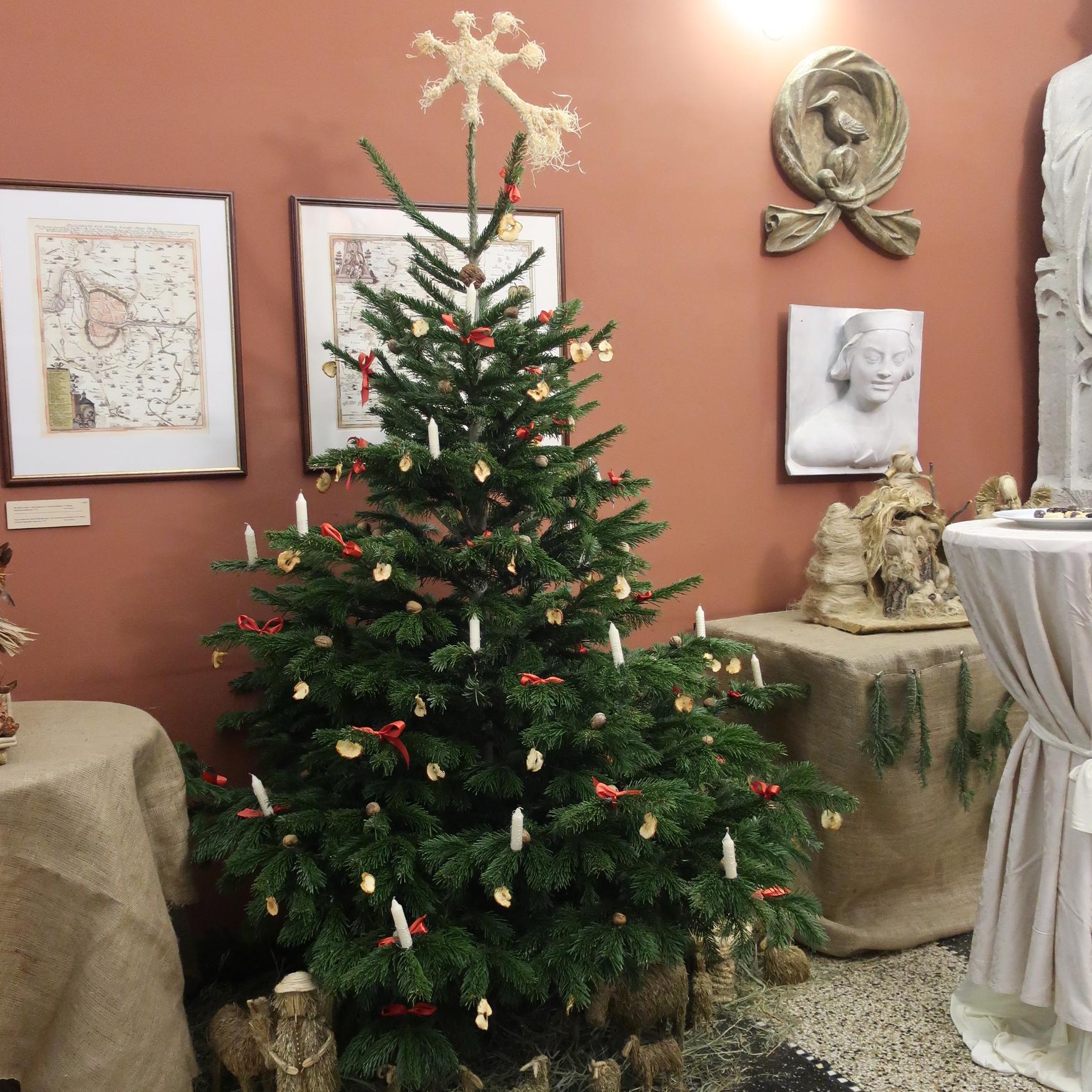 österreich Weihnachtsbaum.Wie Der Weihnachtsbaum Nach Böhmen Kam Radio Prag