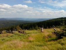 Šumava, photo: Till Janzer