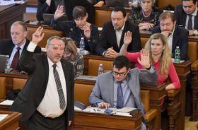 Für den Vorschlag hoben 106 Abgeordnete ihre Hand (Foto: ČTK / Vít Šimánek)