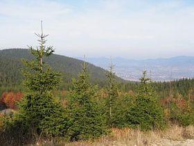 Isergebirge (Foto: Štěpánka Budková)