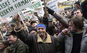 Демонстрация лесников (Фото: ЧТК)