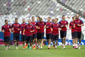 La selección checa en Toulouse, foto: ČTK