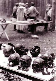 Remains from Katyn mass grave