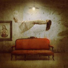'Attirée par la lumière', photo: Kamil Vojnar