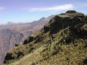 Simien mountains, Ethiopia, photo: Jiří Němec