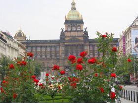 Национальный музей, Фото: Кристина Макова, Чешское радио - Радио Прага