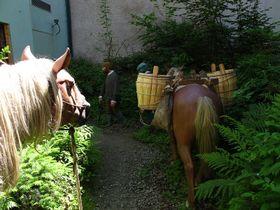 Ausstellung über den Goldenen Steig (Foto: Martina Schneibergová)